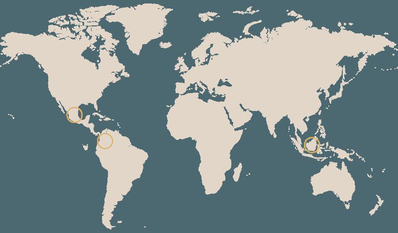 Mokaflor organic and fair trade coffee