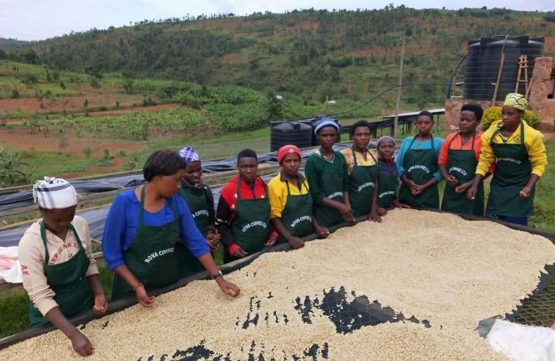 Die Perlen von Ruanda, angebaut von Frauen: Nova Cafè Des Mamas.